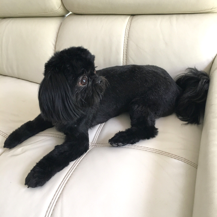 Lady-black-img4